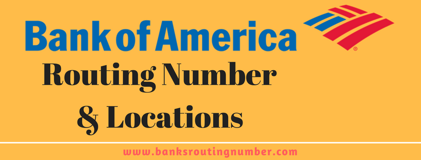 bank of america new york routing no
